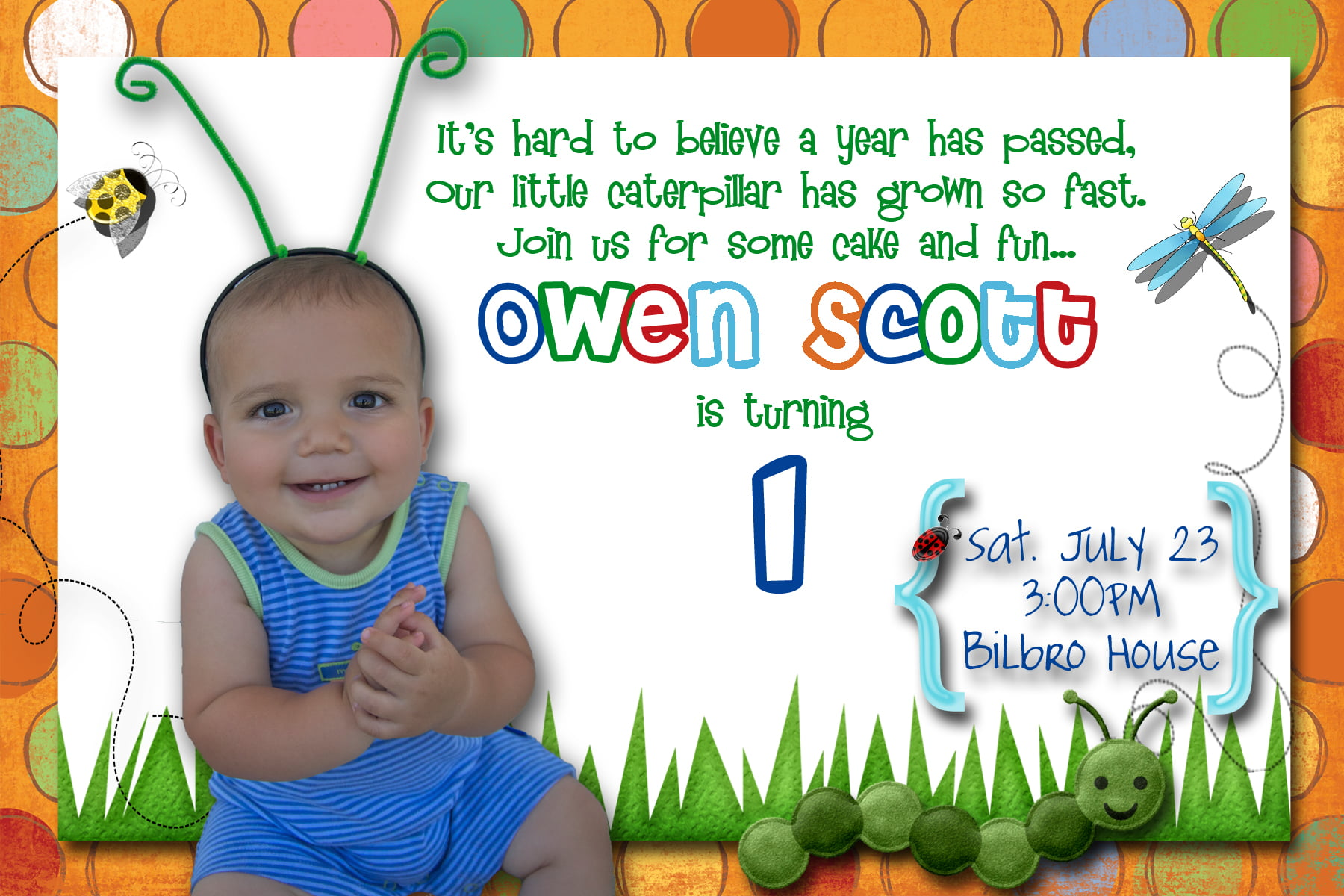Insects First Birthday Party Invitation