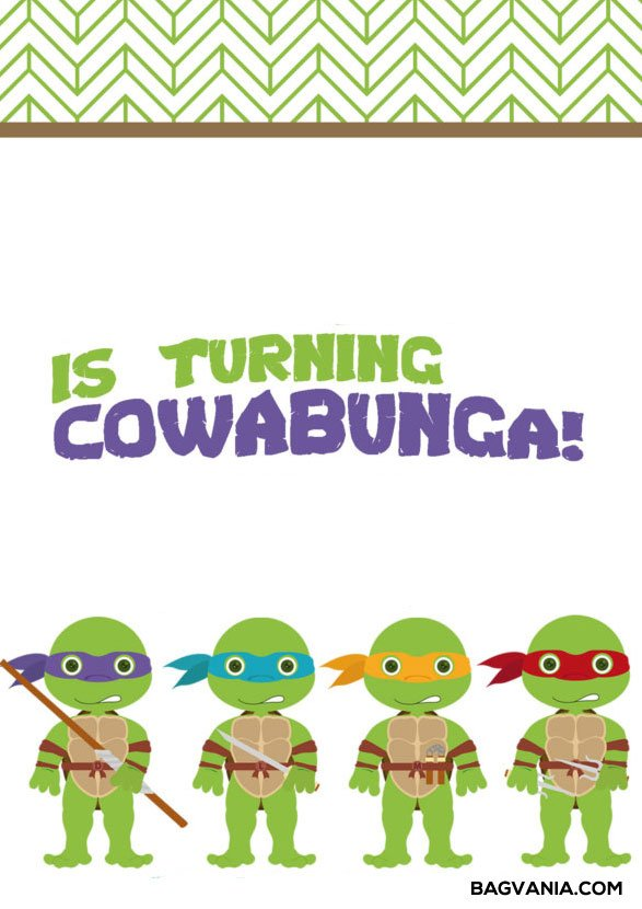 You May Add RSVP And Dress Code To Enliven The Party Here Is Example Of Free Printable Ninja Turtle Birthday Invitations Wording